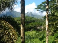 """""""Da wo der Himmel die Erde berührt"""" - auf Kauai ein Ort den wir besuchen in unseren Seminaren auf Kauai. Schauen sie nach unseren aktuellen Angeboten: www.alohana.de, copyright Susanne Rikus"""