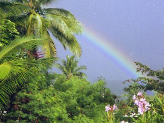 Wailua Kauai (2)